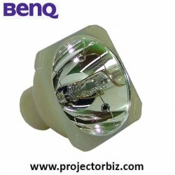 BenQ Replacement Projector Bulb 5J.J0M01.001