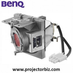 BenQ Replacement Projector Bulb 5J.JGP05.001