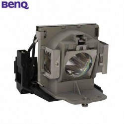BenQ Replacement Projector Lamp 5J.06W01.001