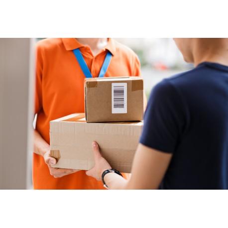 Singapore Courier service
