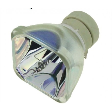 SONY Replacement Projector Lamp LMP-D213 CBH
